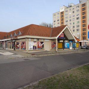 allatorvos_kecskemet_molnar_gyula_11